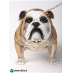 Dog: DiD British Bulldog (AS002A)