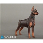 Dog: DiD Doberman Pinscher Red (AS001R)
