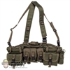 Vest: DiD 0292D NSW Chest Rig