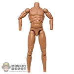 Figure: DAM Toys Muscle Body