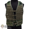 Vest: DamToys 6SH112 MOLLE Tactical Vest (Digital Flora)