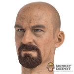 Head: DamToys Bryan Cranston