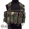 Vest: DamToys M23 Chest Rig Woodland Camo