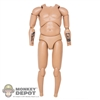 Figure: DamToys Saxon Nude (No Head, Hands, Pegs or Feet)