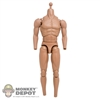 Figure: DamToys 3.5 Muscle Body w/Neck Post & Rubber Muscle Arms