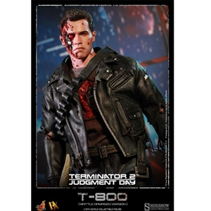 Boxed Figure: Hot Toys T-800 (Battle Damaged) (901980)