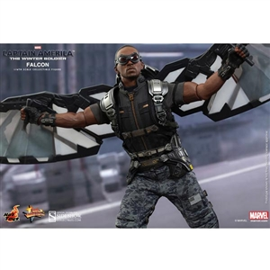 Boxed Figure: Hot Toys Falcon - Captain America The Winter Soldier (902203)