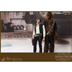 Boxed Figure: Hot Toys Han Solo & Chewbacca (902268)
