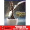 Boxed Figure: Hot Toys 1/4 Scale Little Groot (902300)