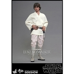 Boxed Figure: Hot Toys Luke Skywalker (902436)