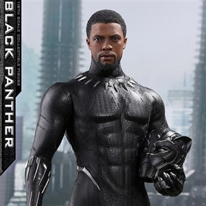 Boxed Figure: Hot Toys Black Panther (903380)