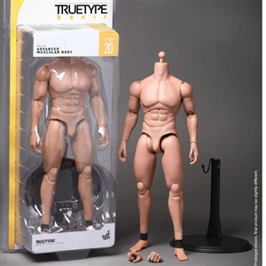 Boxed Figure: Hot Toys True Type Advanced Muscular Caucasian (901995)
