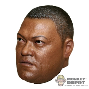 Head: Hot Toys Noland (Lawrence Fishburn)