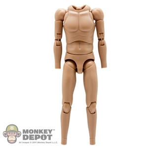 Figure: Hot Toys True Type Slim Body Caucasian (No Head, No Hands, No Feet)
