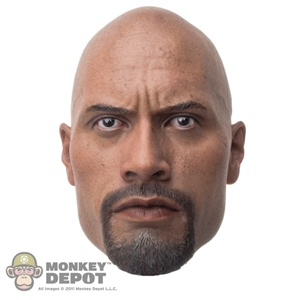 "Head: Hot Toys Dwayne ""The Rock"" Johnson"