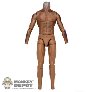 Figure: Hot Toys Tonto Muscle Body