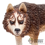 Dog: Hot Toys Brown & White Wolf