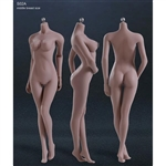Boxed Figure: Phicen Seamless Body in Suntan/Middle Breast (PL-MB2015S02A)