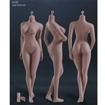 Boxed Figure: Phicen Seamless Body in Suntan/Large Breast w/Removable Feet(PL-LB2015S12DC)
