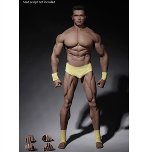 Boxed Figure: TBLeague Super Flexible Male Seamless Body (PL2016-M34)