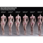 Boxed Figure: TBLeague Super Flexible Seamless Female Body Series