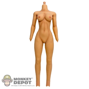 Figure: Phicen Female Airbrush Painted Version (No Head, No Hands, No Feet)