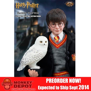 PREORDER Boxed Figure: Star Ace Harry Potter (SA-0001)