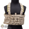 Vest: Playhouse Chest Rig