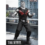 Boxed Figure: Toys Era The Steel (TE-015)