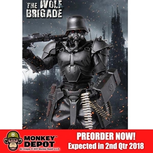 Boxed Figure: TiTToys The Wolf Brigade-Black Wolf (TIT-009)