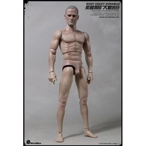 Boxed Figure: World Box 1/6 Articulated Male Body w/Head (WB-AT003)
