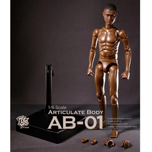 Boxed Figure: ZC World Articulate Body (AB-01)