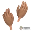 Hands: ZC World Relaxed (Thicker Hands)