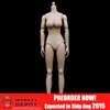 ZY Toys Big Breast Body in Pale Skin (ZY-N001)
