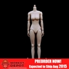 ZY Toys Medium Breast Body in Pale Skin (ZY-N002)