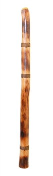 Didgeridoo Store | Small Rope Finish Didgeridoo (1884) | Buy Online