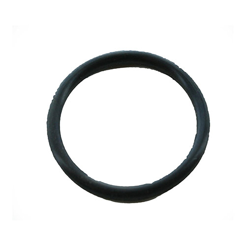 Griswold O-Ring Diaphragm for a 1 inch to 1.25 inch 2000 series