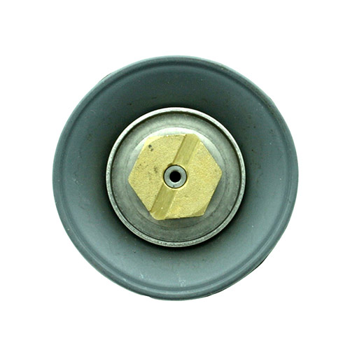 Replacement Diaphragm Disc Assembly for a DWS-DWPRV 1.50 inch