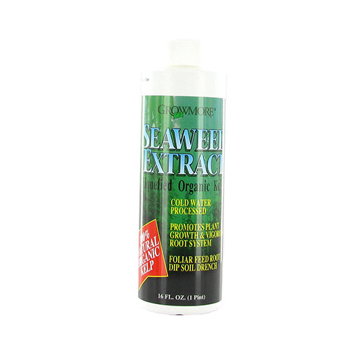 Grow More Seaweed-Extract - Natural Organic 0.10-0.10-1.5 Liquified Organic Kelp (16oz)