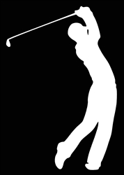 Laptop Decals-Sports-Golf
