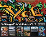 Bay Area Graffiti by Steve Rotman & Chris Brennan