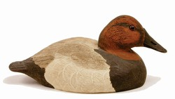 Parker's Canvasback Kit with UVision