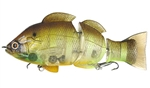 Lucky Craft Real Bluegill