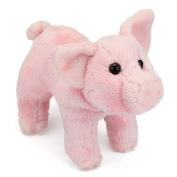 Buttons the Little Plush Piglet by Douglas