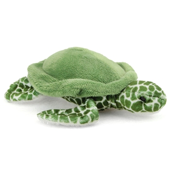 Tillie the Little Plush Sea Turtle by Douglas