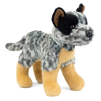 Clanger the Little Plush Australian Cattle Dog by Douglas