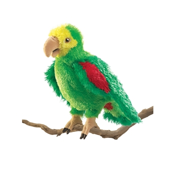Full Body Green Parrot Puppet by Folkmanis Puppets