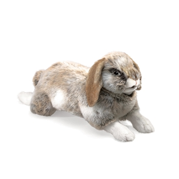 Holland Lop Rabbit Full Body Puppet by Folkmanis Puppets