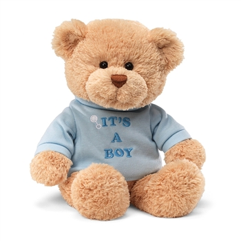 Plush Teddy Bear with Blue It's A Boy Shirt by Gund
