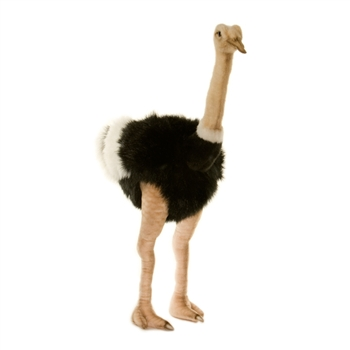 Handcrafted 32 Inch Lifelike Male Ostrich Stuffed Animal by Hansa
